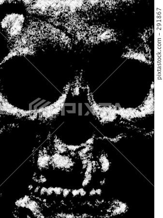 头颅骨 头盖骨 骨架