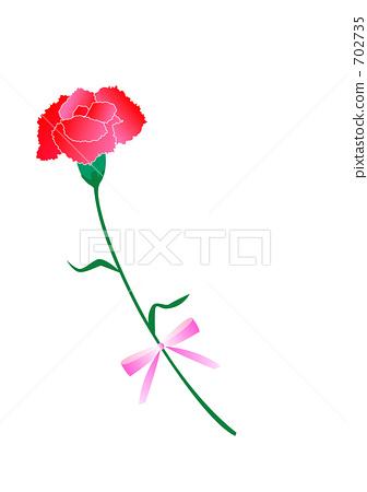 插图素材: 康乃馨 花朵 花