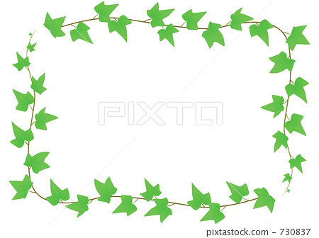 植物/花 其它植物 葡萄藤/常春藤 外框 常春藤 框架  *pixta限定素材