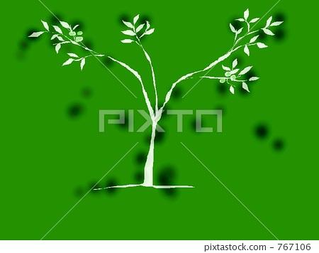 插图: 幼苗 自然美 树木