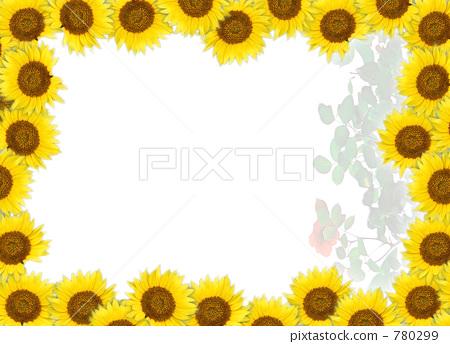 框架 向日葵 边框