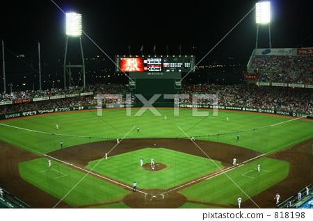 体育场 棒球场 球场