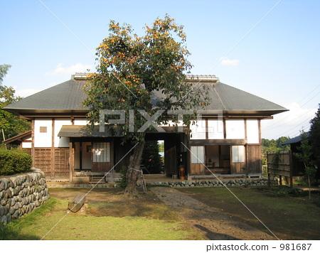 柿子树 门 日式房屋