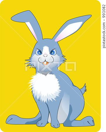 兔子 前臺 正面