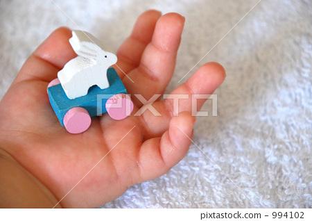 手 动物宝宝 婴儿