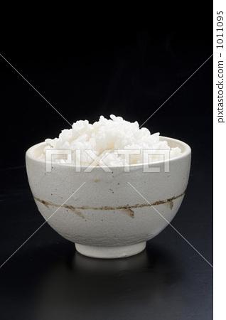 白米子是什么动物图片