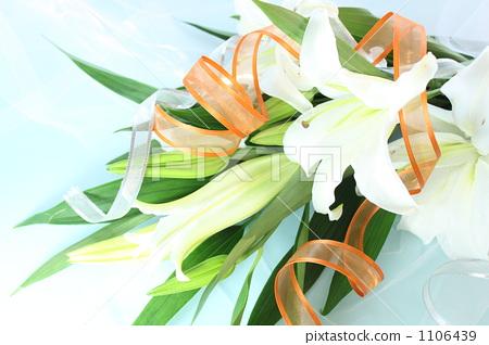 照片素材(图片): 白百合 莉莉 花束