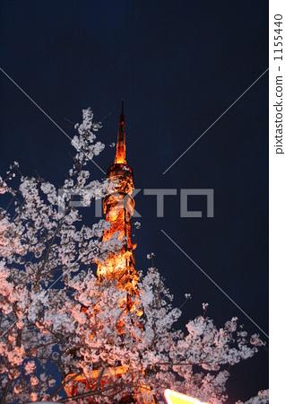 东京塔 夜晚的樱花树 东京铁塔