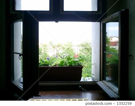 图库照片: 在窗户旁 窗边 窗口