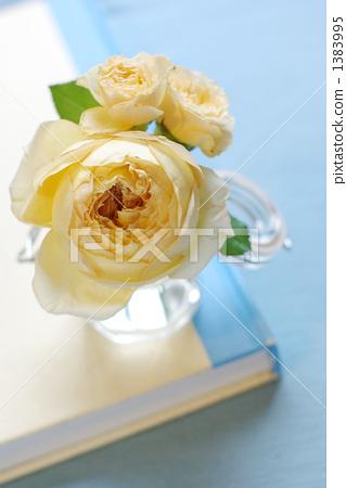 壁纸 花 花束 鲜花 桌面 319_450 竖版 竖屏 手机图片