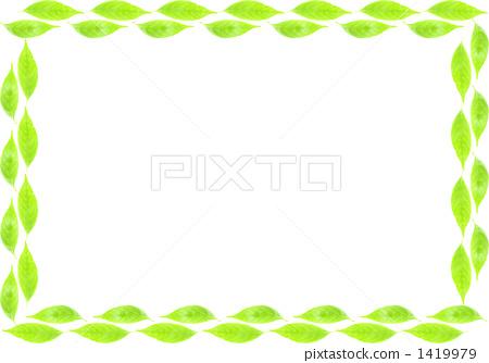 银杏叶 绿叶 树叶
