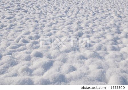 羽毛状的雪花 青森县 雪景