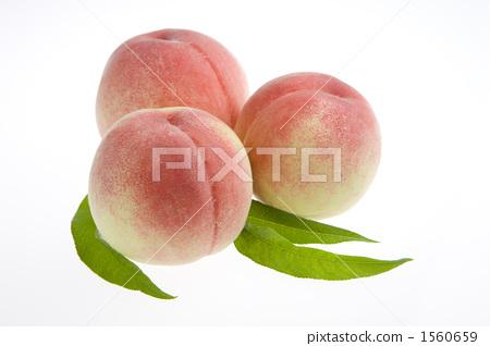 图库照片: 桃子 白桃 水果