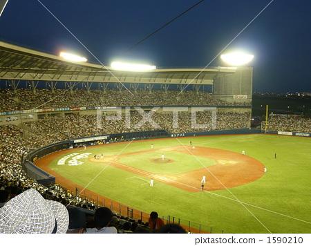 体育场 球场 棒球场