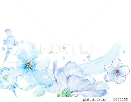 插图素材: 花瓣 花朵 花