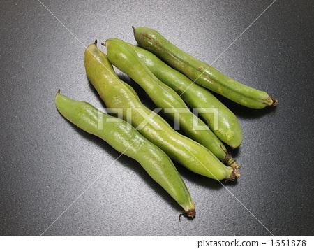 发芽蚕豆_豆瓜类_无公害蔬菜