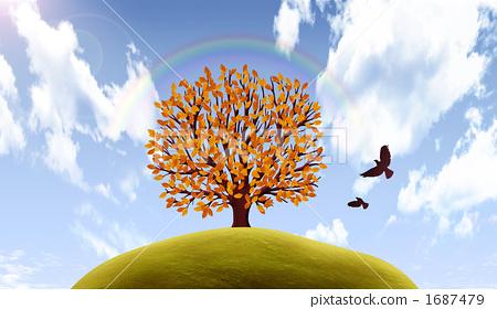 照片素材(图片): 阔叶树 风景 植物
