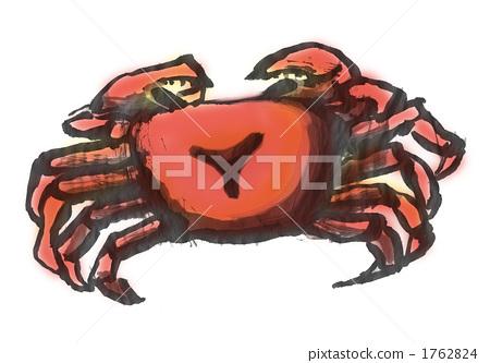 螃蟹 甲壳动物 墨水
