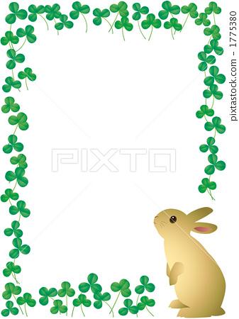一只动物 兔子 动物群