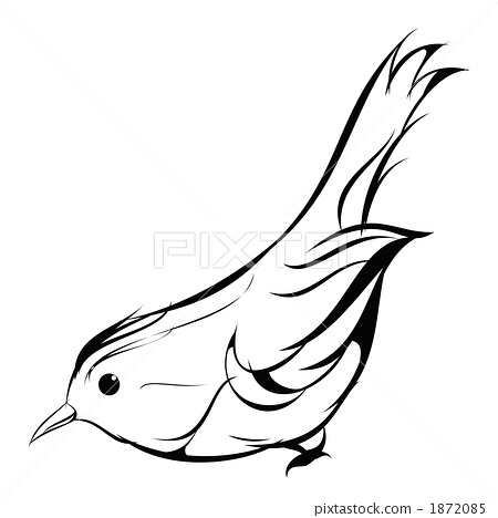 用数字画鸟简笔画