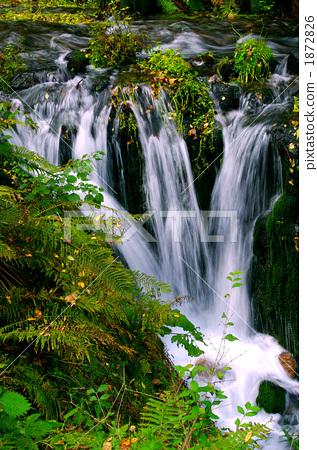 壁纸 风景 旅游 瀑布 山水 桌面 317_450 竖版 竖屏 手机