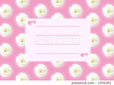 贺卡 书写纸 粉色
