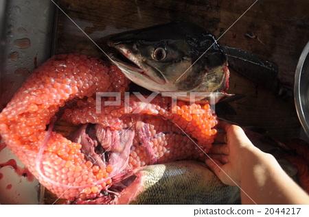 食物 多少钱 腌三文鱼籽