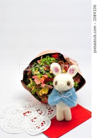 关于兔子的诗句-形容兔子词语