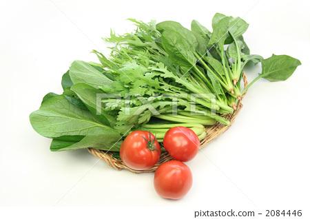 图库照片: 绿叶菜 叶菜类 绿色图片
