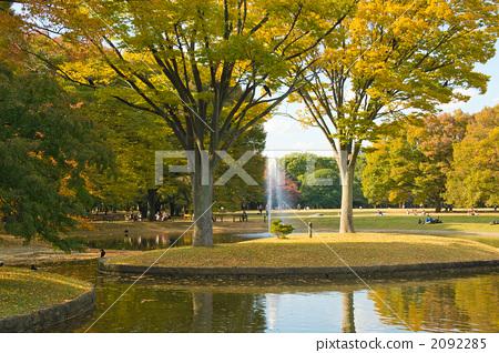 公园 代代木公园 场景