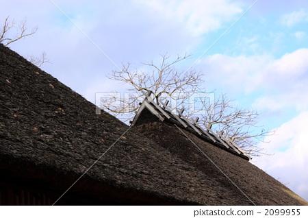 照片: 茅草屋顶 风景 乡下