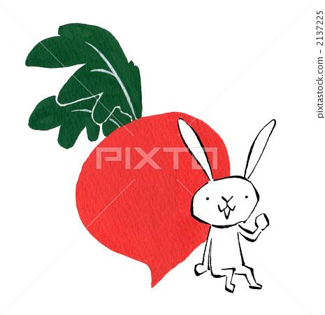 兔子 红萝卜 动物宝宝