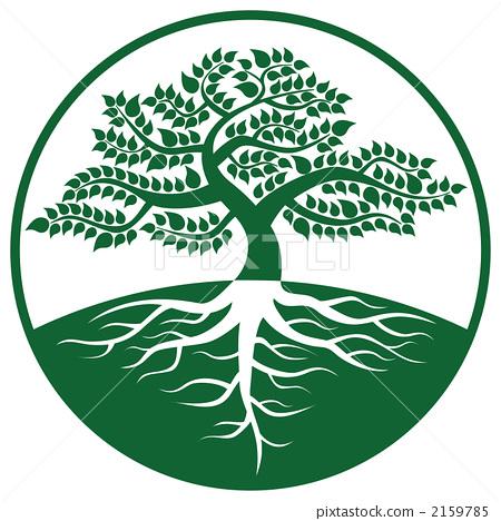 树木标志的牌子图片