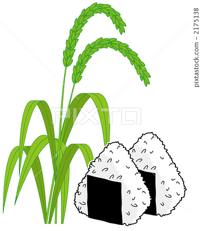 水稻丰收 stock 插图