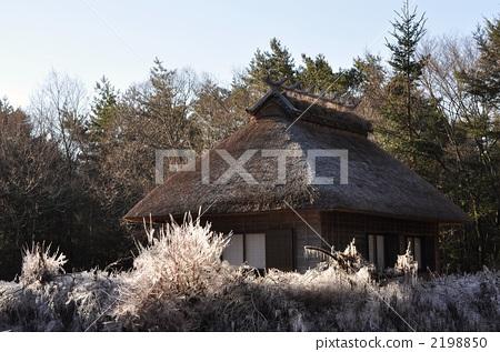 民居 日式建筑 茅草屋顶