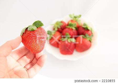 首页 照片 蔬菜_食品 水果 草莓 水果 草莓 白底  *pixta限定素材仅在
