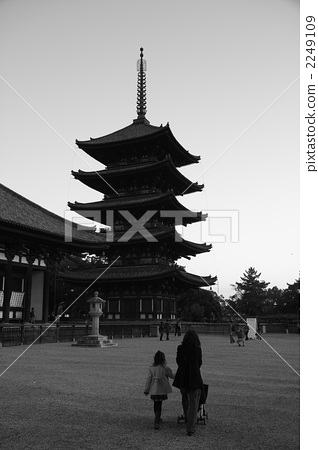 庙宇 五重塔 寺院