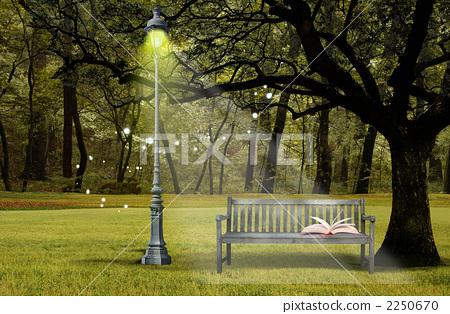 图库插图: 公园 背景 原始森林