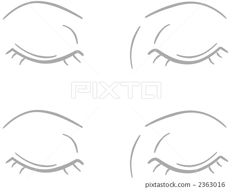 眼睑 眉毛 睫毛