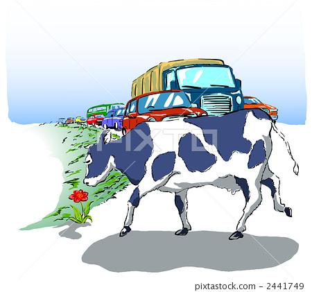 图库插图: 奶牛 十字路口 交叉