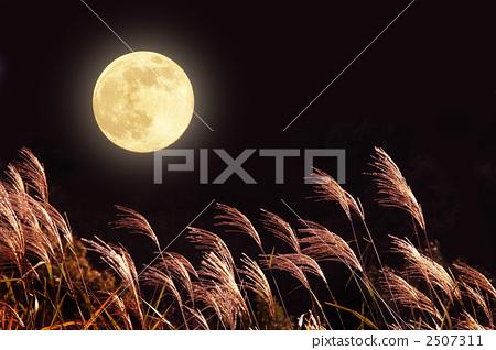 景色 秋天 夜晚