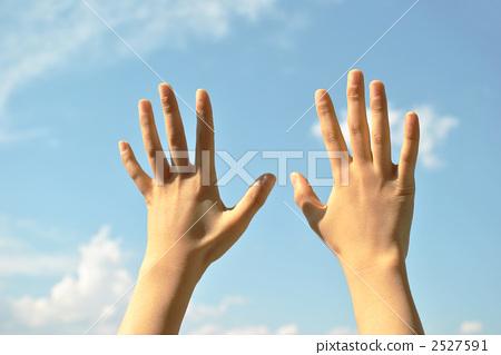 图库照片: 两只手 身体部位 手