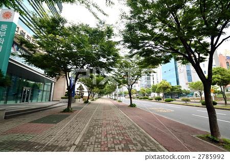 人行道 首页 照片 业种_产业 土木 建筑业 人行道  *pixta限定素材仅