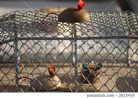 动物 手工艺品 工业艺术品