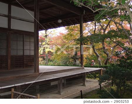 图库照片: 民居 日式房屋 房屋