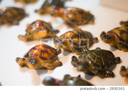 海龟 海洋动物 工业艺术品