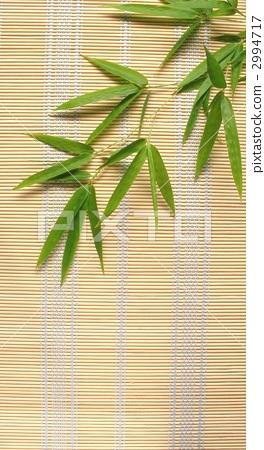 芭蕉叶 竹子 海报