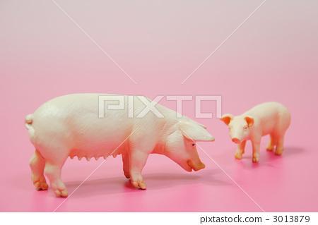 粉色 动物 父母和小孩