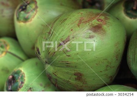 椰子 水果 椰子树