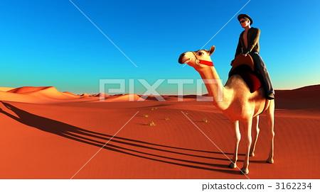 图库插图: 沙漠 骆驼 男性